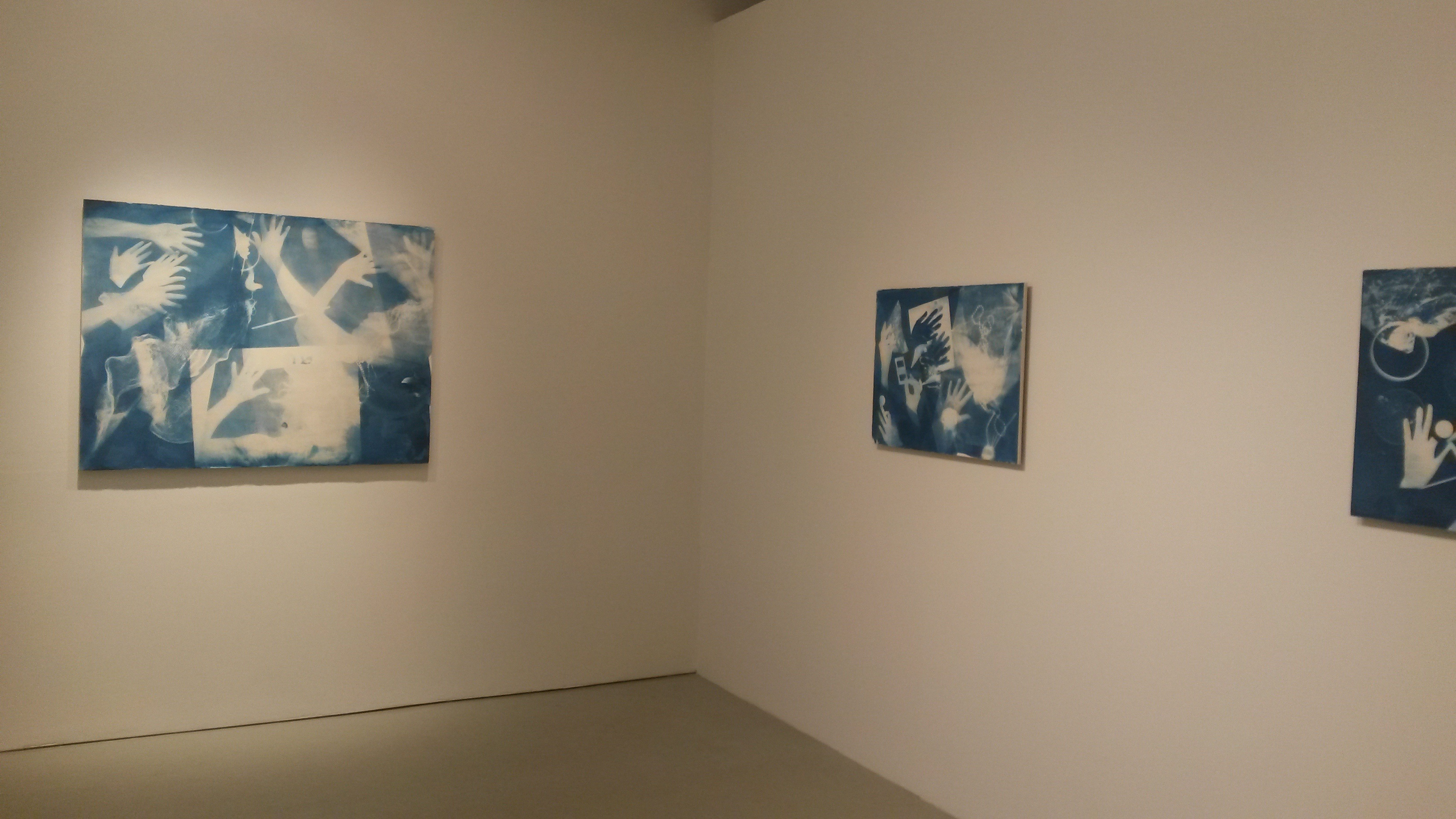 Ofri Cnaani_OC real and fake-series_Cyanotypes