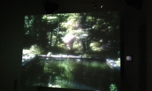 Bill Viola, The Reflecting Pool, 1977-79, Videotape, color; two channels of mono sound; 7:00 minutes, Performer: Bill Viola. Installation view to videostill at the National Portrait Gallery.