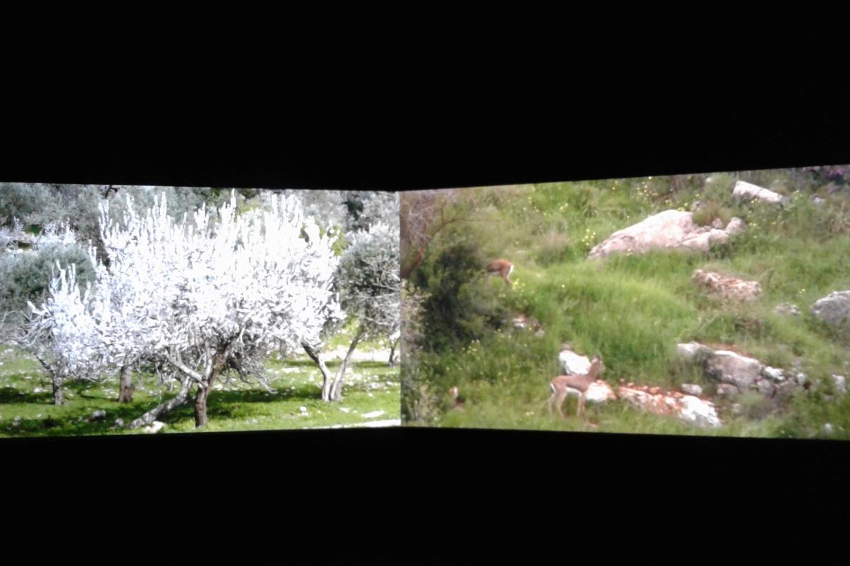 Jumana Emil Abboud's videostill in Bildmuseet-exhibition, 2017.