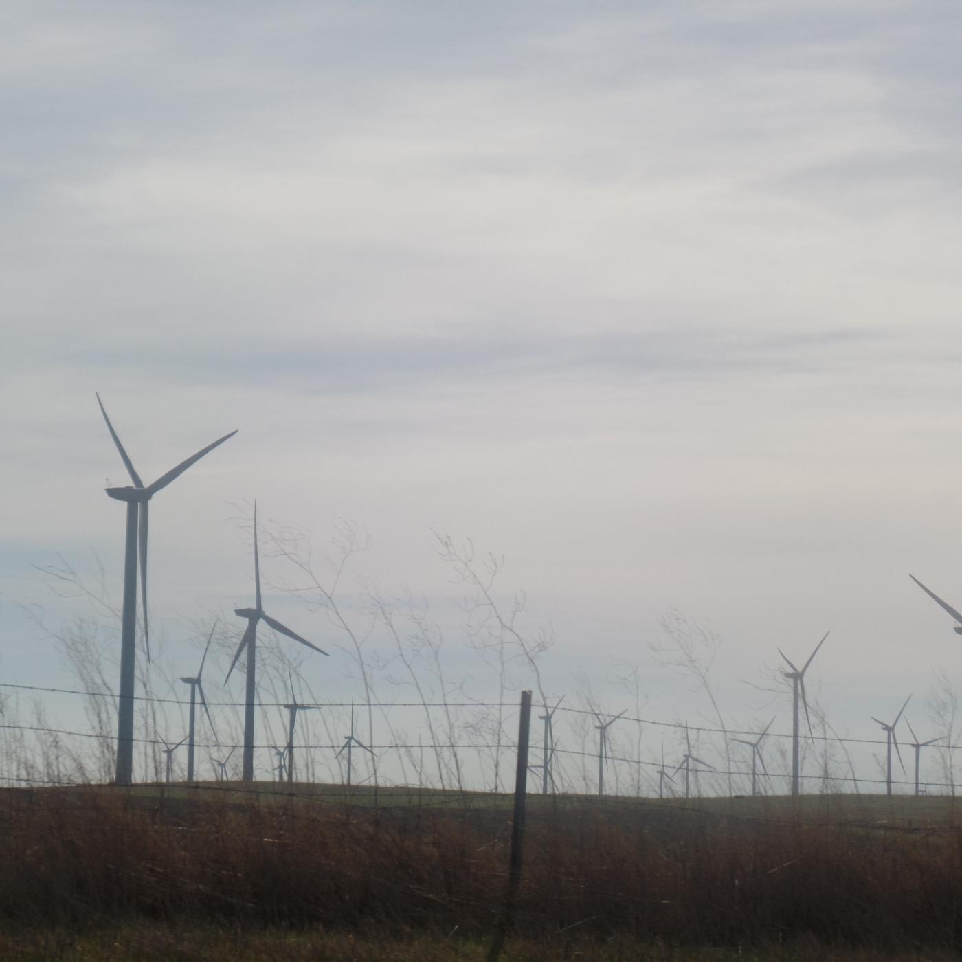 Windmills @Firstindigo&Lifestyle